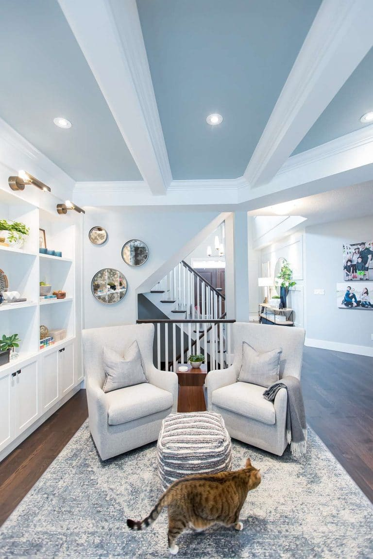 Family Room with Blue Coffered Ceiling, Curved back armchairs, Grey Blue area rug, built-in wall units, grey and white poof ottoman and family cat